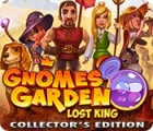 Gnomes Garden: Lost King Collector's Edition spel