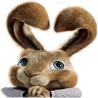 Hop: Easter Bunny Coloring spel