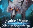 Sable Maze: Sinister Knowledge spel