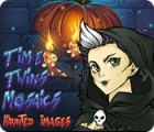 Time Twins Mosaics Haunted Images spel